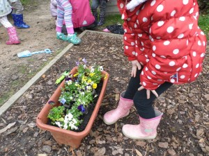 PLANTING FLOWERS AT FOREST SCHOOL